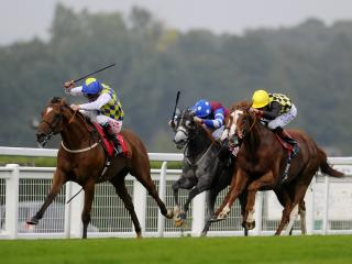 Flat racing returns to Sandown on Friday